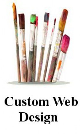 Website Custom Design Services Panel